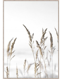 Wheat in the Breeze Framed Canvas 62x92cm