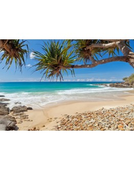 Coolum Beach Printed Canvas 118x80cm