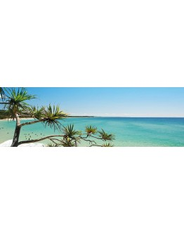 Tree Beach Printed Canvas 158x53cm