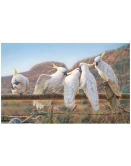 Greg Postle - Waterline Framed Canvas 110x68cm