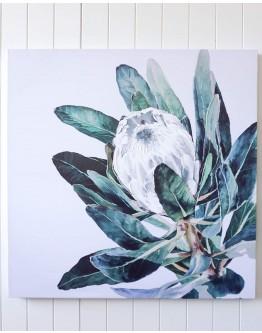 White Protea Print w/ Oak Finish 90x90cm