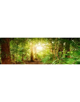 Green Forest Printed Canvas 158x53cm