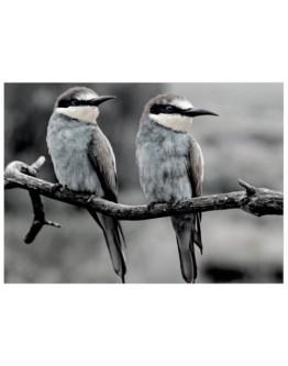 Birds on branch Printed Canvas 129.5x91.5cm