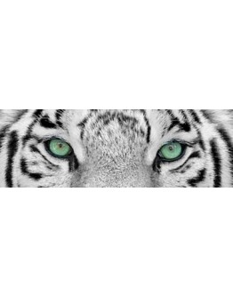 White Tiger Eyes Printed Canvas 158x53cm